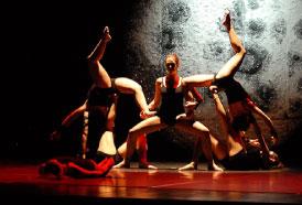 どのような出演者・ダンサーが出るショーなのですか?